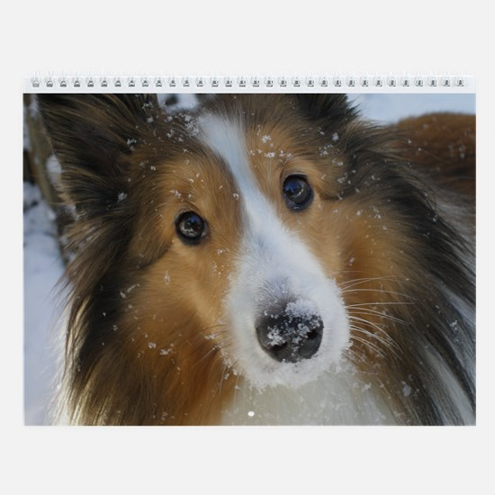 Snow Whiskers Wall Calendar