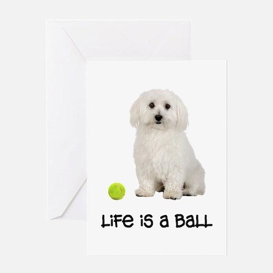 Bichon Frise Life Greeting Card