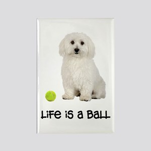 Bichon Frise Life Rectangle Magnet