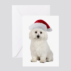 Bichon Frise Santa Greeting Card