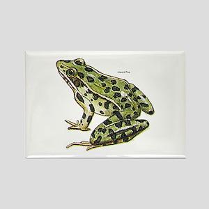 Leopard Frog Rectangle Magnet