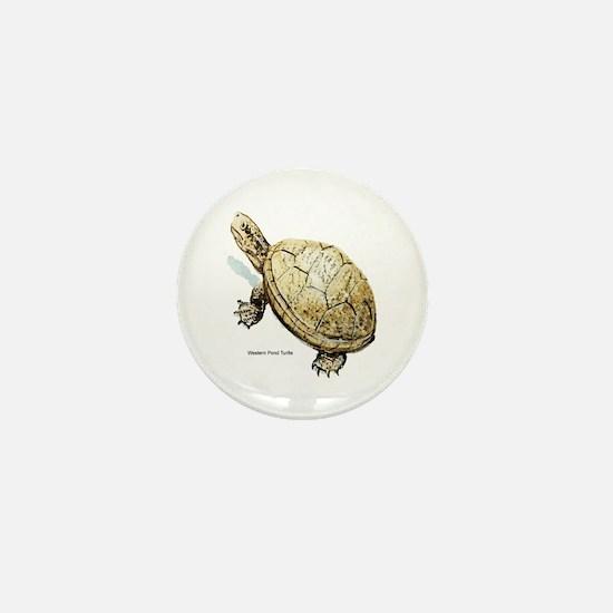 Western Pond Turtle Mini Button