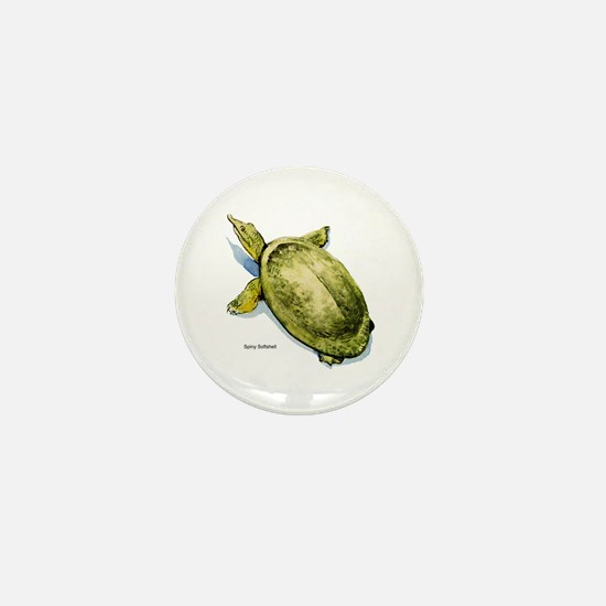 Spiny Softshell Turtle Mini Button
