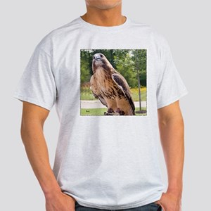 Red Tail Hawk (1) Ash Grey T-Shirt