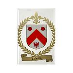 LEHOUX Family Rectangle Magnet (100 pack)