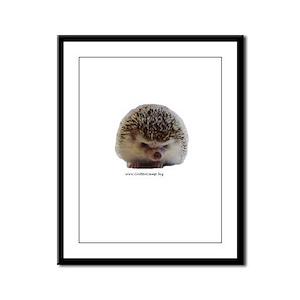 Prickleball 1 Framed Panel Print
