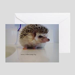 Prickleball Greeting Card