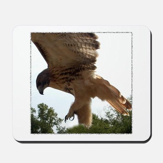 Ostara, Red Tailed Hawk Landi Mousepad