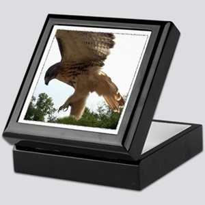 Ostara, Red Tailed Hawk Landi Keepsake Box