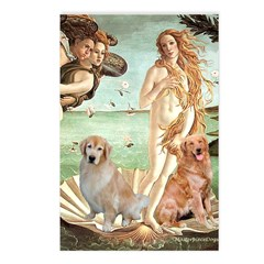 Venus / Two Golden Retrievers Postcards (Package o