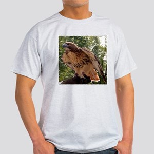 Red Tailed Hawk Ruffled Feath Ash Grey T-Shirt