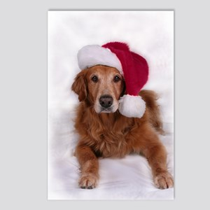 Chirstmas Golden Retreiver Postcards (Package of 8