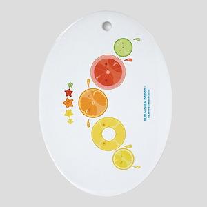 Kawaii Citrus Fruit Slices Group Oval Ornament