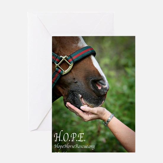 HOPE Horse Rescue Greeting Card