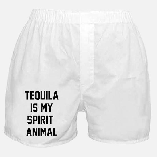 Cinco De Mayo Funny Tshirts Gifts Shirts Boxer Sho