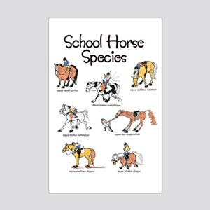 School Horse Species Mini Poster Print