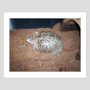 Alberta the box turtle Small Poster