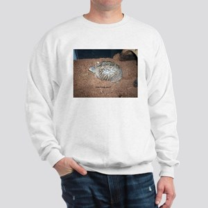 Alberta the box turtle Sweatshirt