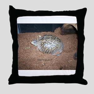 Alberta the box turtle Throw Pillow