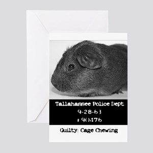 Guinea Pig Convict Greeting Cards (Pk of 10)