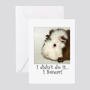 I Didn't Do It... Greeting Cards (Pk of 10)