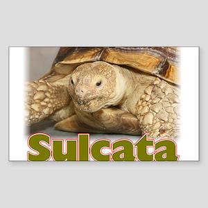 Sulcata Rectangle Sticker