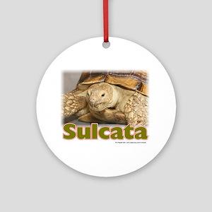Sulcata Ornament (Round)