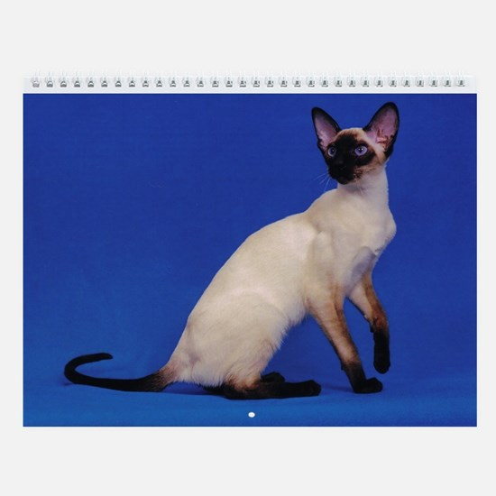 Wall Calendar - Beautiful Siamese Cats