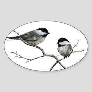 chickadee song birds Sticker