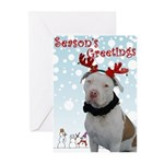 Pit Bull Greeting Cards (Pk of 10)