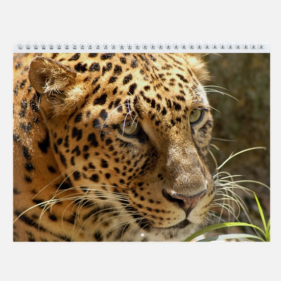 2 Leopards Wall Calendar