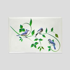 Blue Jays Rectangle Magnet