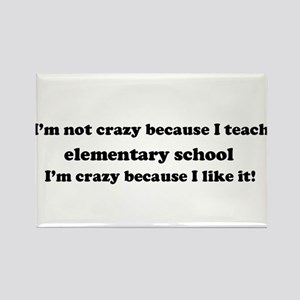 Elementary School Crazy Rectangle Magnet