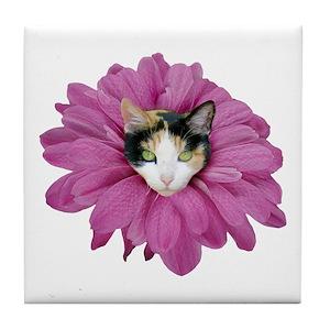 Calico cat coasters cafepress mightylinksfo