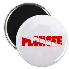 https://i3.cpcache.com/product/330510446/plongee_french_scuba_flag_225_magnet_10_pack.jpg?side=Front&height=240&width=240