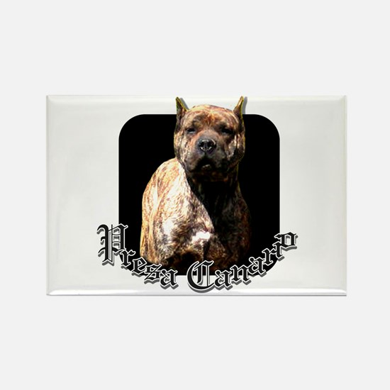 Presa Canario Rectangle Magnet (100 pack)