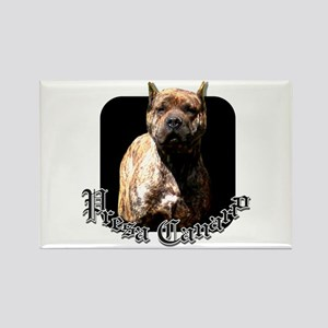 Presa Canario Rectangle Magnet