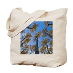 Tote Bag - Looking-up Aspen