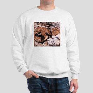 Desert Rattlesnake Sweatshirt