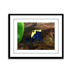 dyeing poison dart frog Framed Panel Print