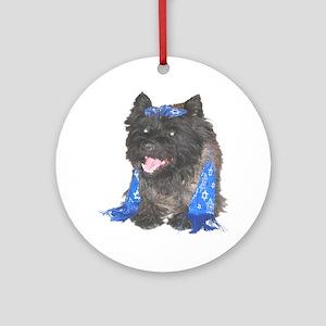 Nice Jewish Cairn Terrier