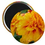 "Orange Flowers 2.25"" Magnet (10 pack)"