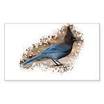 Steller's Jay Rectangle Sticker 50 pk)