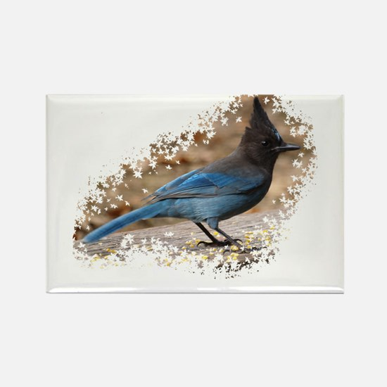 Steller's Jay Rectangle Magnet (100 pack)