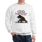 Cats and Music Sweatshirt