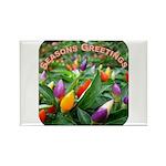 Pepper Christmas Lights Rectangle Magnet (100 pack