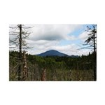 Clouded Whiteface Mini Poster Print