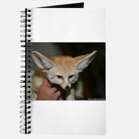 Flash the fennec fox Journal