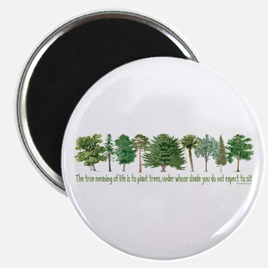 "Plant a Tree 2.25"" Magnet (100 pack)"