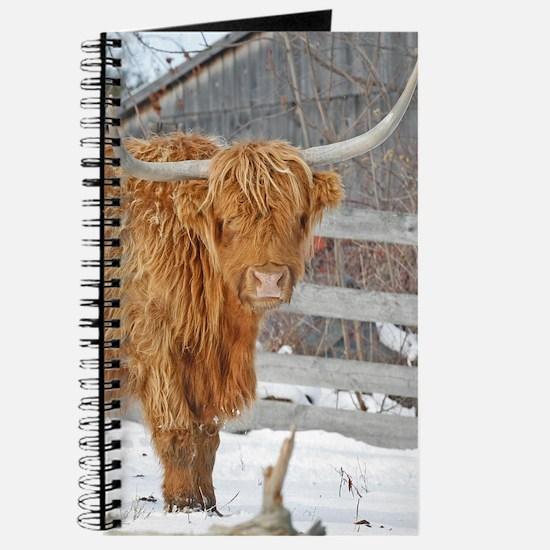 Highland Cattle Journal